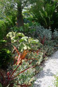 front garden/ sun and shade