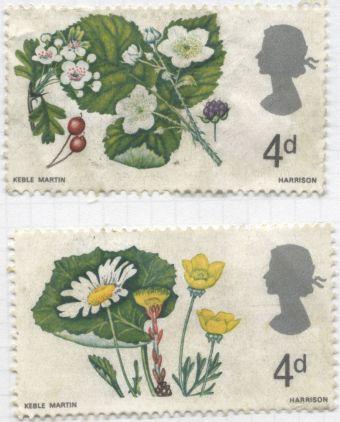UK, Keble Martin, botanical illustrator