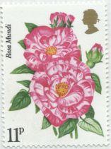 UK - Rosa Mundi