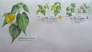 Australia, Christmas Island flora, June 2013 Abutilon listeri, Colubrina pedunculata, Indigofera hisuta, Urena lobata var. sinuata