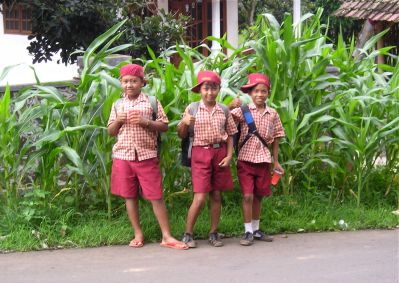 There's no such thing as a school bus in rural eastern Java...