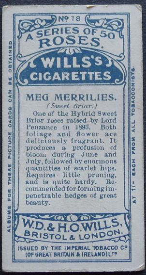 Rose, Meg Merrilies