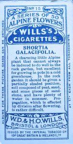 Shortia galacifolia, Wills' Alpine Flowers, 1913