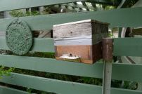 Penny McKinlay's stingless bee hive
