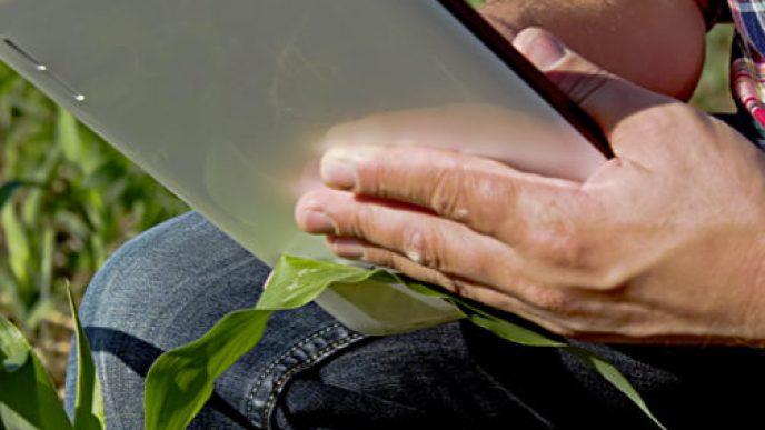 Farmer kneeling in field with tablet