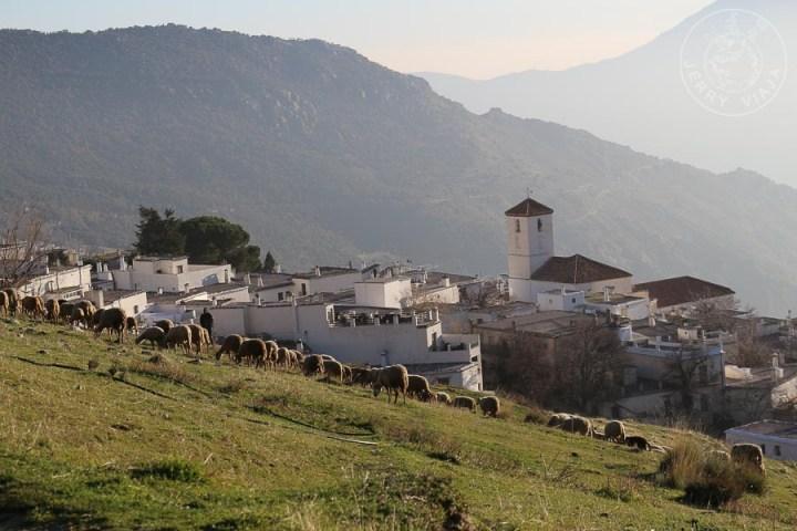 Capileira, uno de los pueblos mas bonitos de españa en la alpujarra, sierra nevada