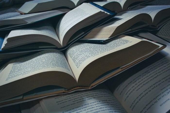 Books School Learning Reading  - MeganLeeB / Pixabay