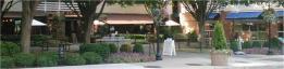 Mediterra courtyard http www mediterrarestaurant c