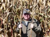 Paddy in the corn