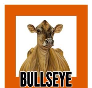 new.bullseye