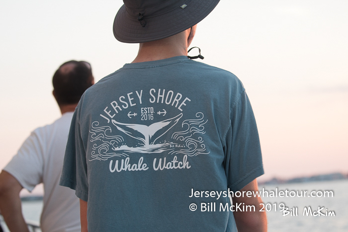 , Friday 9/4 whale watching review, Jersey Shore Whale Watch Tour 2020 Season