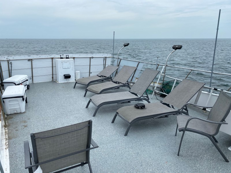, Our boat is huge and has plenty of room! Belmar Whale watching trips!, Jersey Shore Whale Watch Tour 2020 Season
