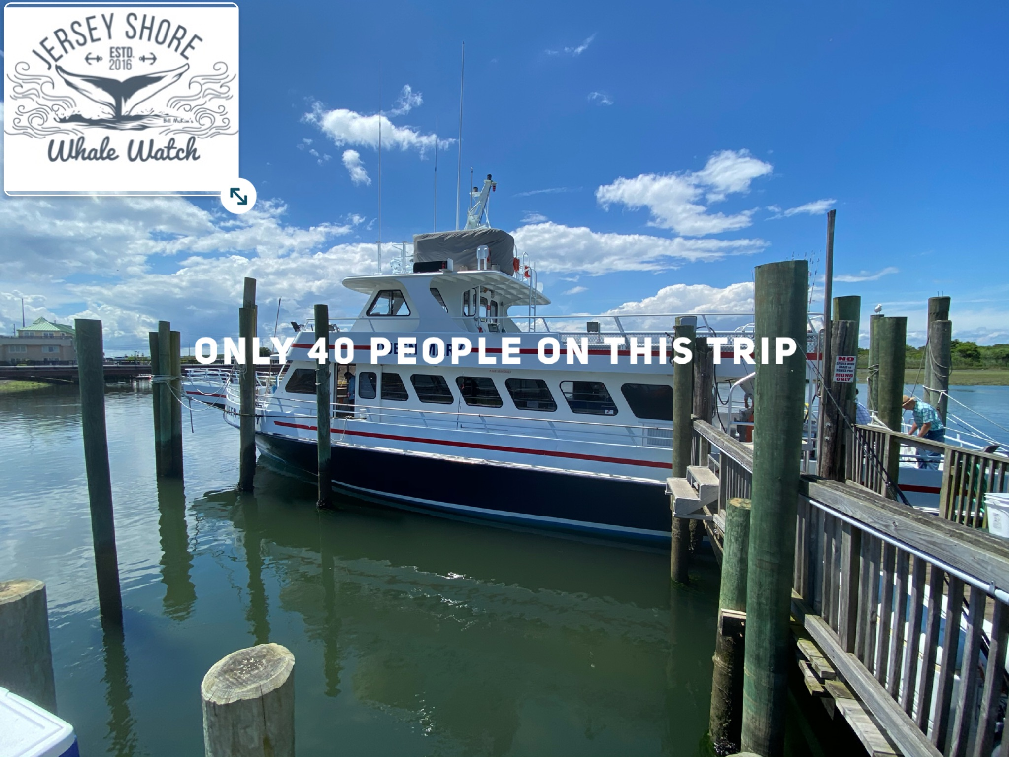 , 12 HOUR OFF SHORE WHALE WATCHING ADVENTURE OCTOBER 19TH, Jersey Shore Whale Watch Tour 2020 Season