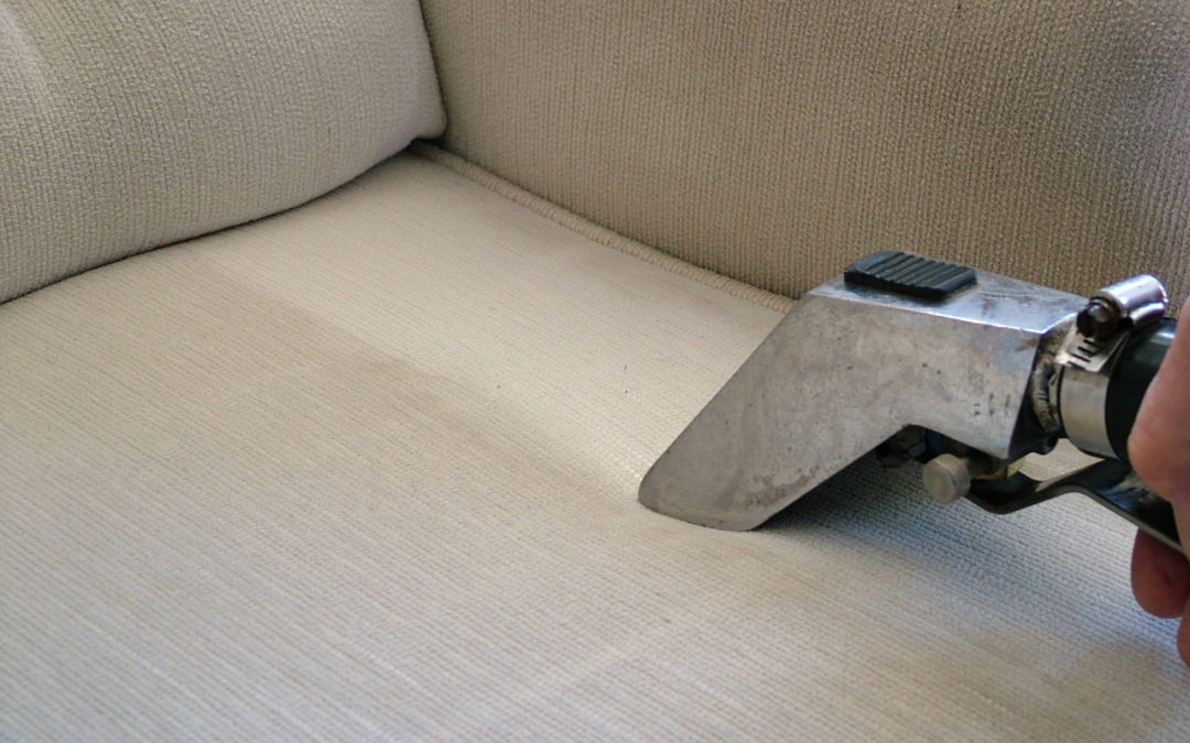 NJs 1 Carpet Cleaning Service Near Me