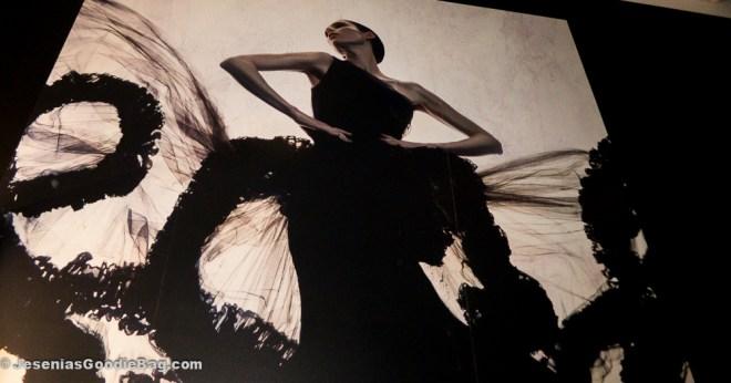 Coco Rocha for Silhouette fragrance