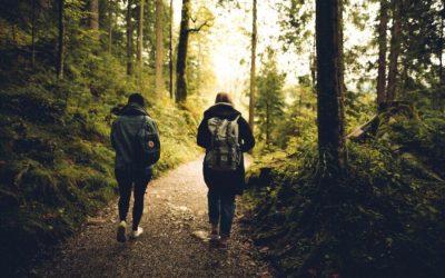 5 Fantastic Health Benefits Of Walking