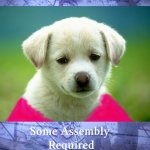 Review – Some Assembly Required