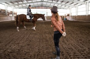 Rolling Stone Equestrian