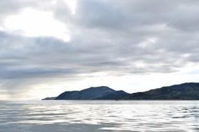 Tasman Bay