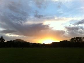 Sunset at the dog park, Dunedin