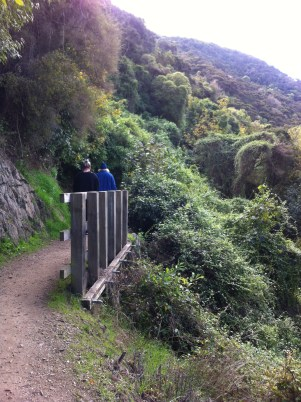 Outram Glen river walk