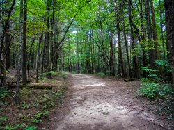 Chestnut Knob Trail, South Mountains State Park, Connelly Springs, NC