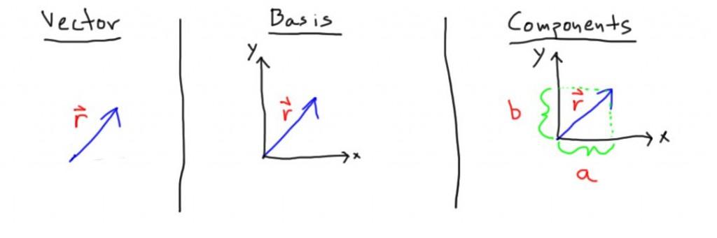 VectorBasisComponents-1024x341.jpg (1024×341)