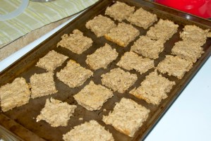 Beer and dog treats? {Spent Grain Dog Treats}