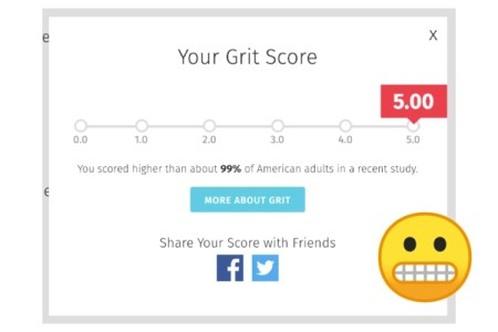 my grit score is 5.