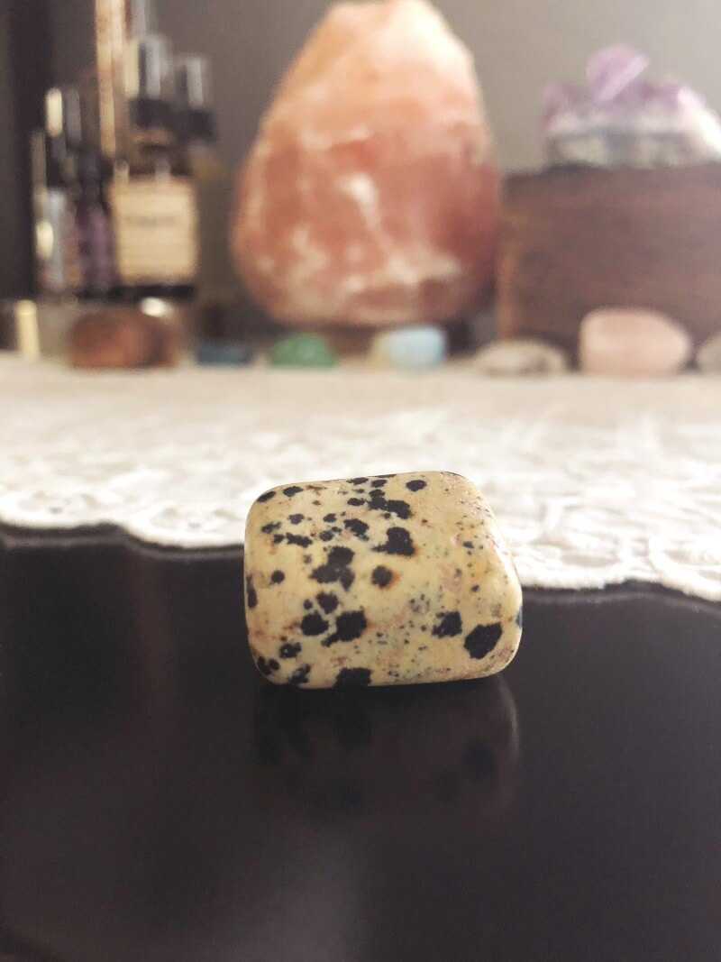 jasper-dalmatian-stone