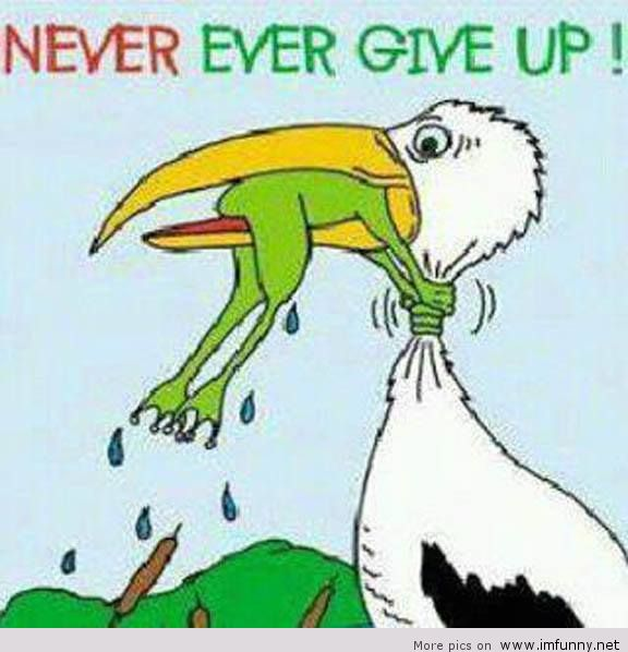 Never give up! - Jessica E. Larsen