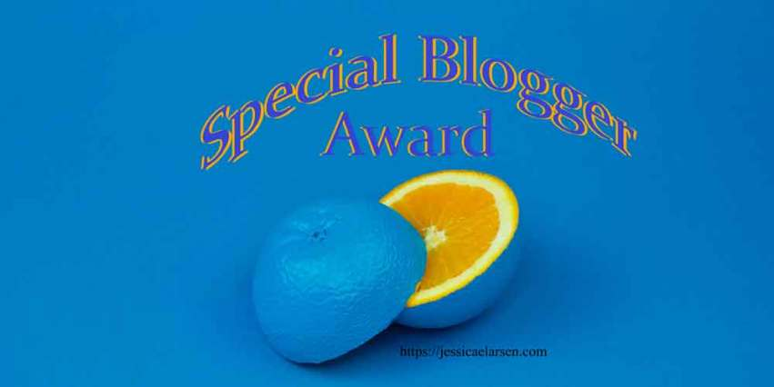 Special Blogger Award