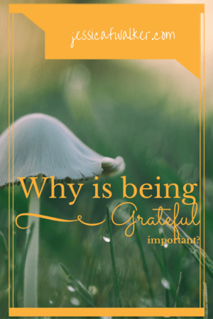 Why is Being Grateful Important?