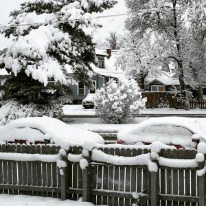 JessicaFWalker.com | The Benefits of Snow | Fence Covered in Snow in Colorado