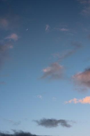 pink clouds moonslit