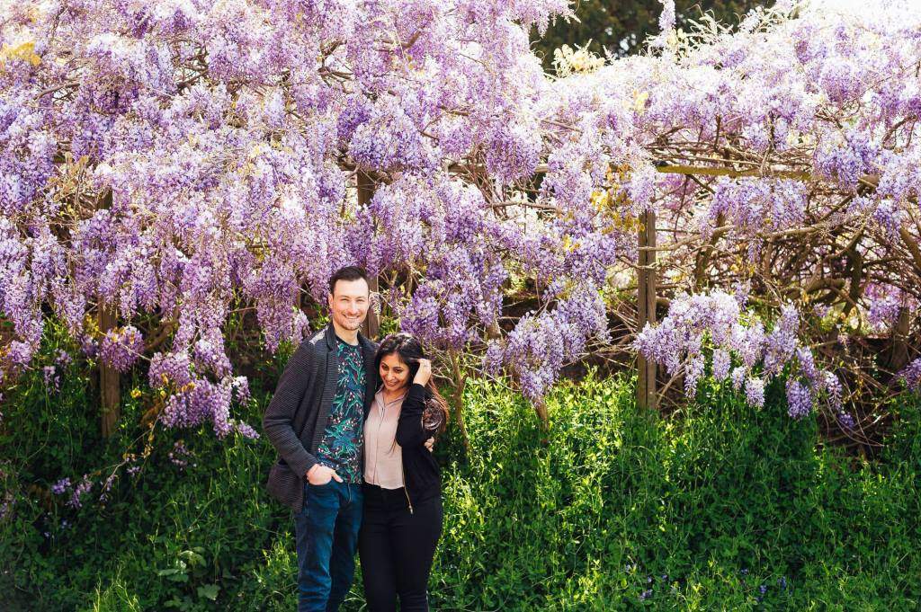 Forty Hall Engagement Shoot - couple stand in front of gorgeous Wisteria flowers