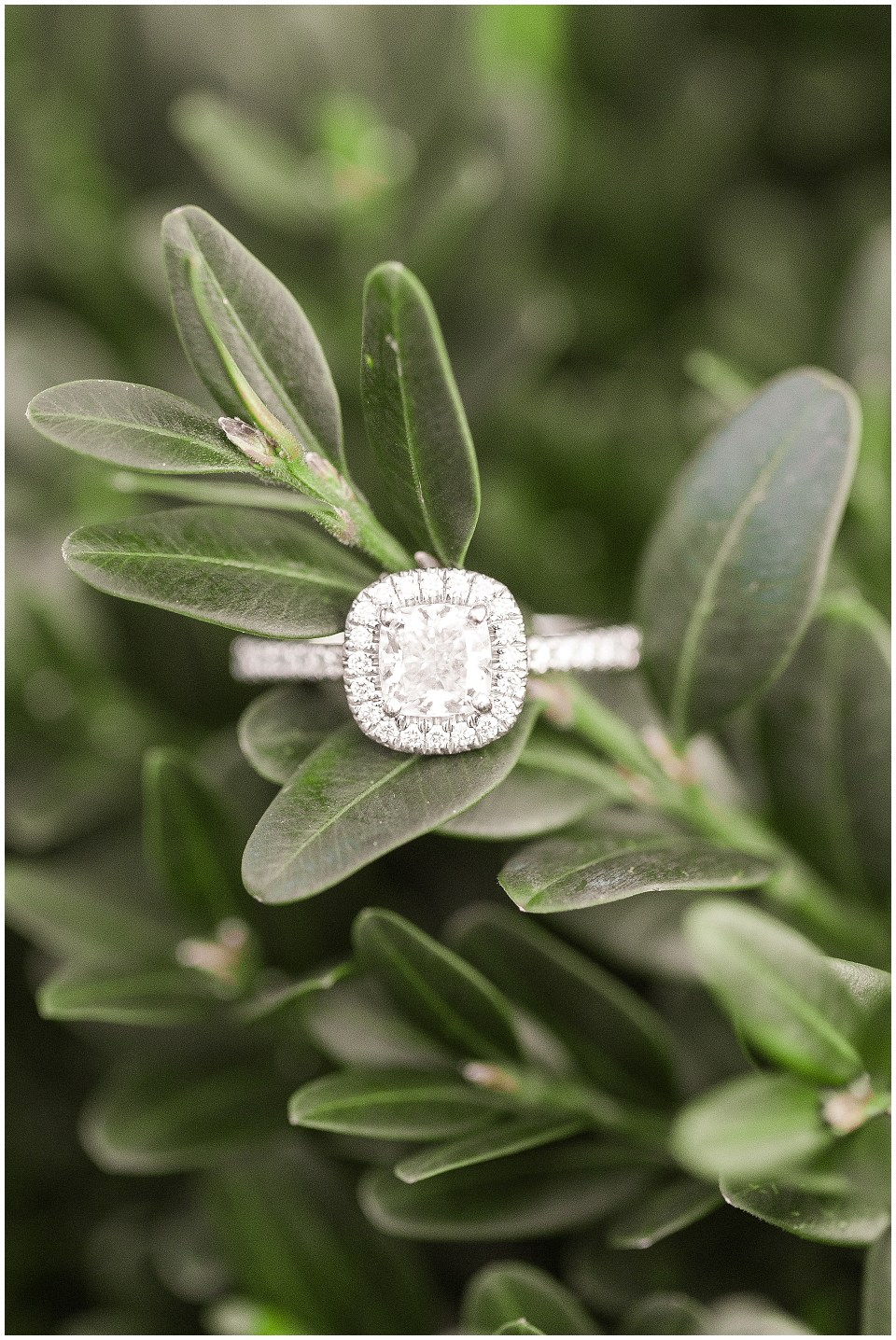 winter engagement session ring shot