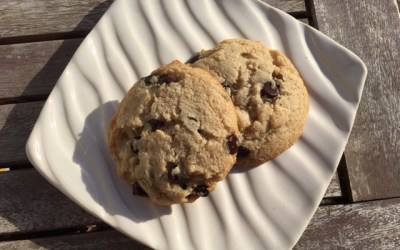 Chocolate Chip Cookie (Paleo and Keto Friendly)
