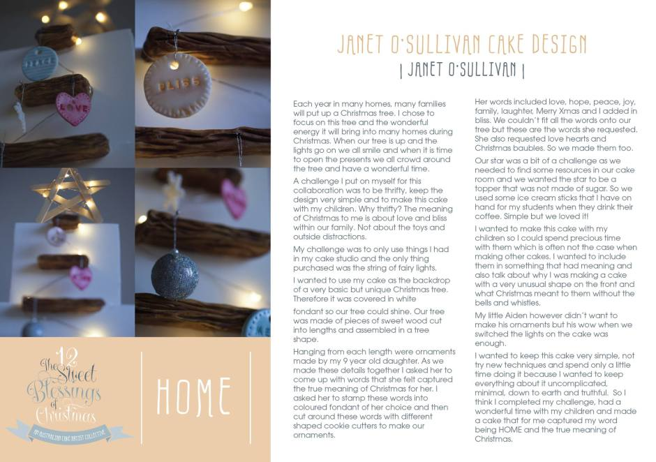 Day 2 Home explained by Janet O'Sullivan of Janet O'Sullivan Cake Design