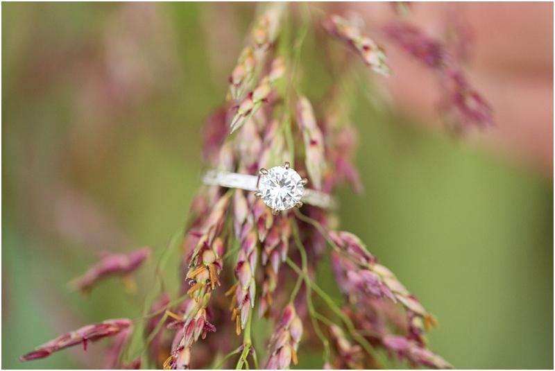 South Carolina Engagement photographers