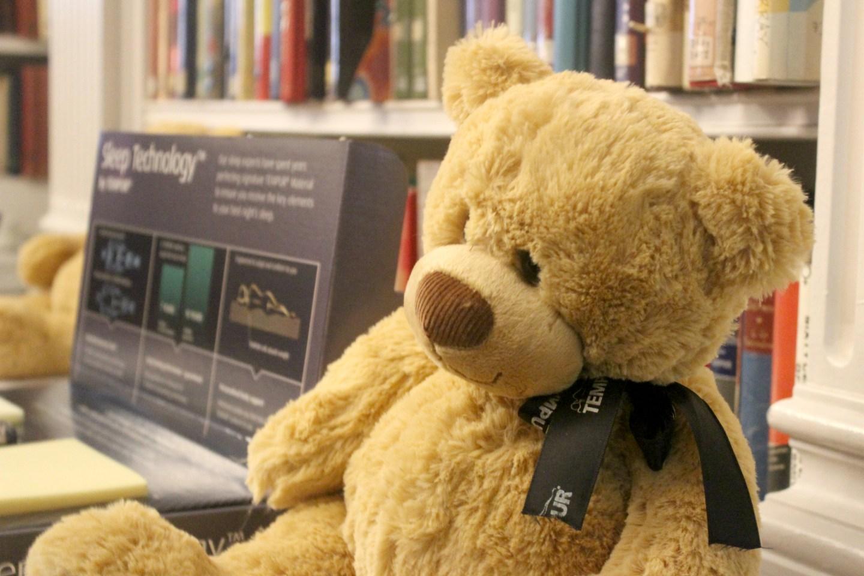 Teddy-Bear-Tempur
