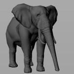 elephant_Wip4
