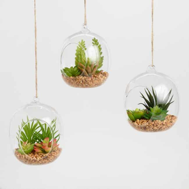 lass Globes with Faux Succulents Set of 3- last minute gifts