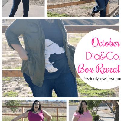 Dia&Co. Reveal (October Box)