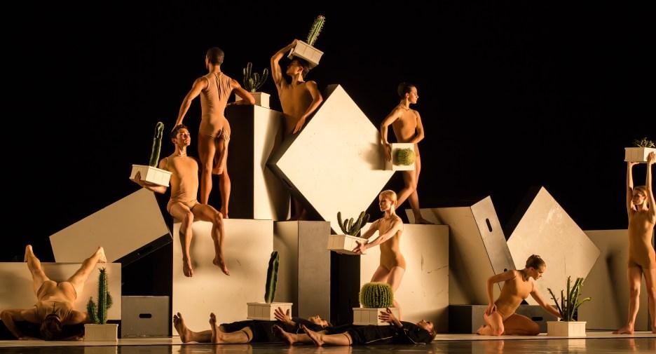 Artists of Houston Ballet, Cacti. May 2016. Photography by Amitava Sarkar