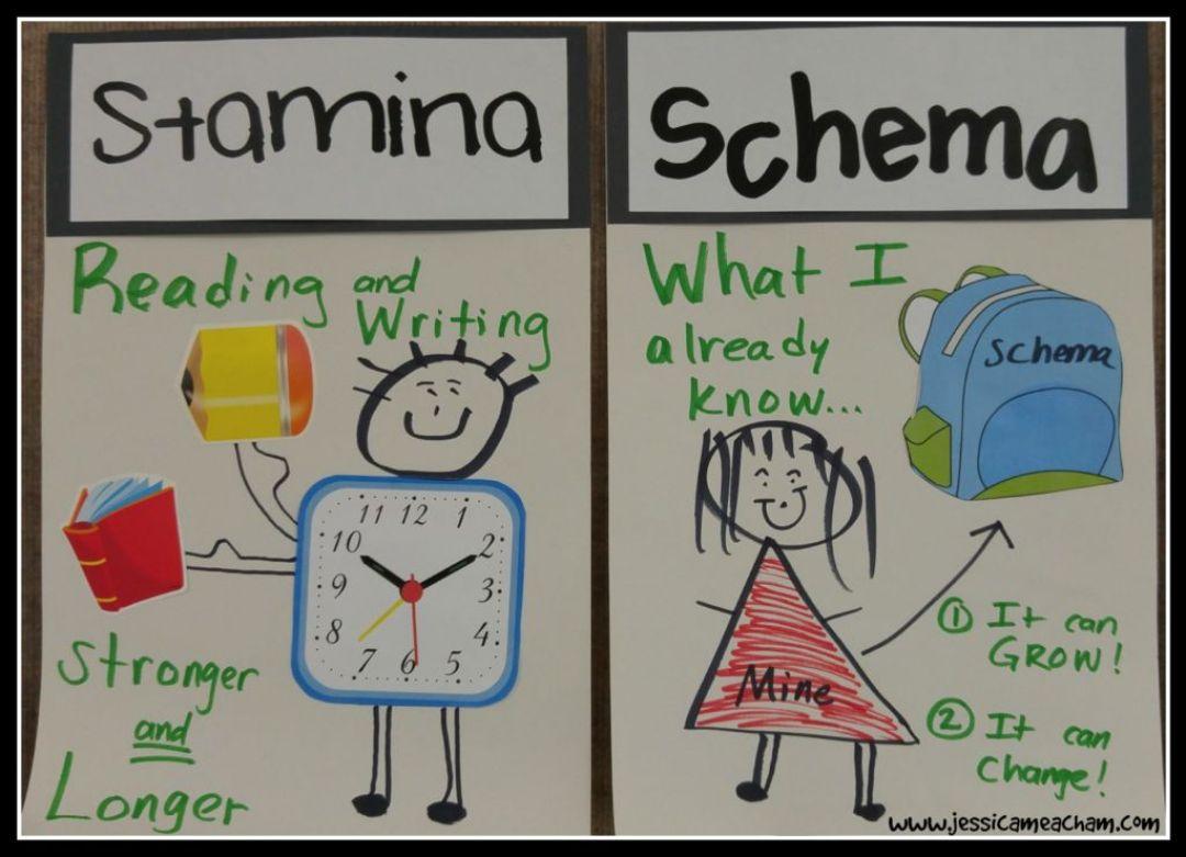 schema and stamina