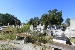 The Cementerio Union Hebrea Chevet-Ahim, a Sephardic Jewish cemetery in Havana established in 1942 for Jews from Spain and Portugal, is overgrown and its tombstones crumbling. Photo credit: Jessica M. Castillo