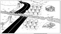 observation vs inference | Biology Bellringers
