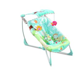 Bouncy Chairs For Babies Godrej Chair Accessories Mother And Baby Awards 2012 13 Fishwifey