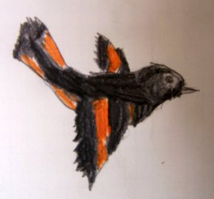 bird-flying child drawing
